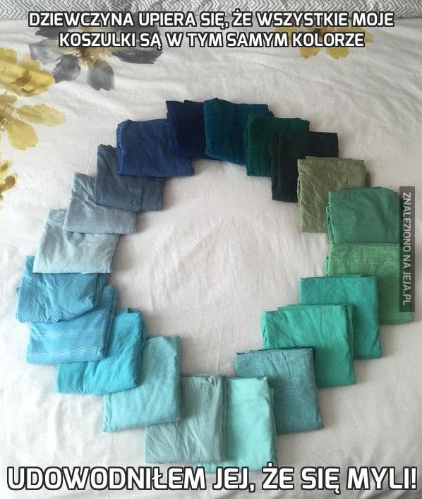 Dziewczyna upiera się, że wszystkie moje koszulki są w tym samym kolorze