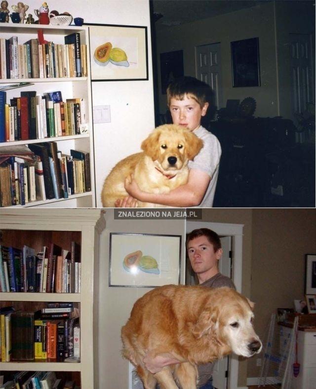Po paru latach nic się nie zmieniło
