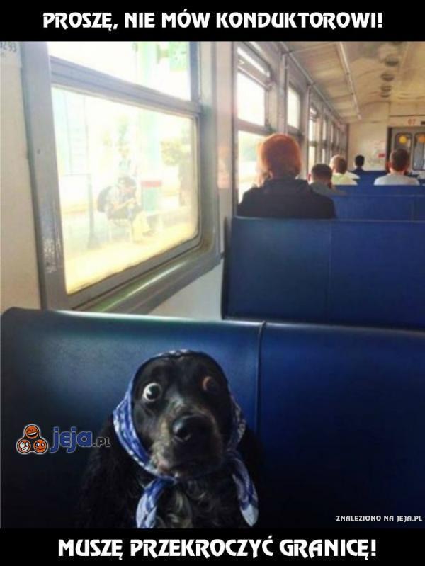 Proszę, nie mów konduktorowi!