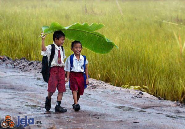 Przyjaźń w dzieciństwie