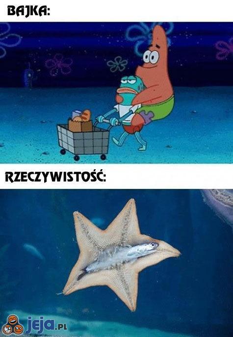 SpongeBob vs rzeczywistość