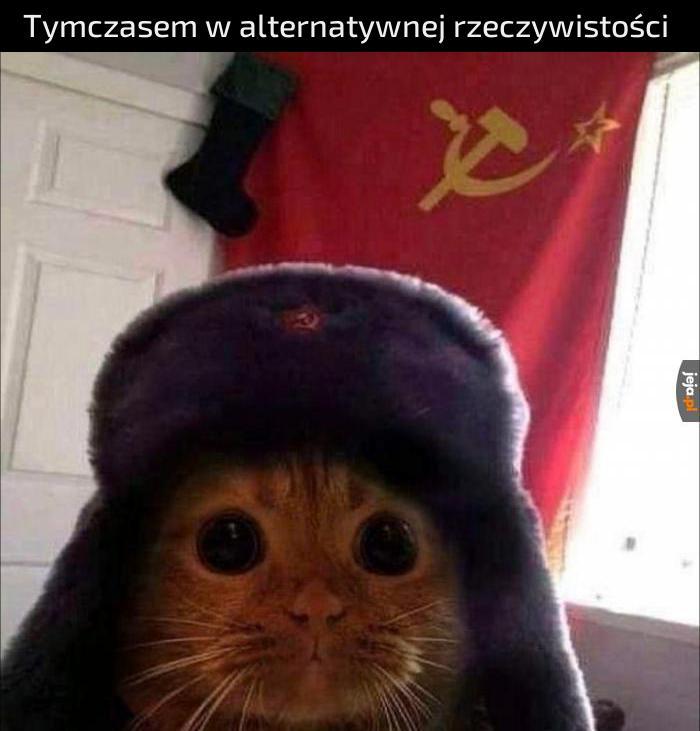 Pamiętacie pieseła komunistę?