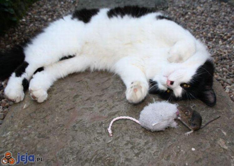 Zabawa z myszką
