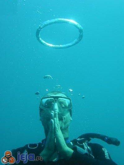 Aniołek podwodny