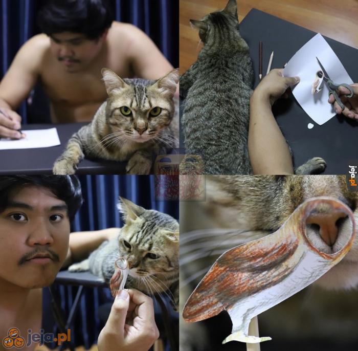Samotny artysta i jego kot