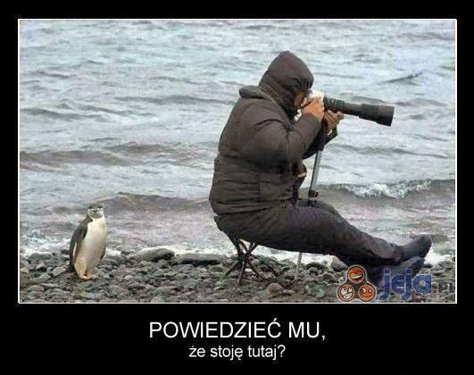 Fotografowanie natury