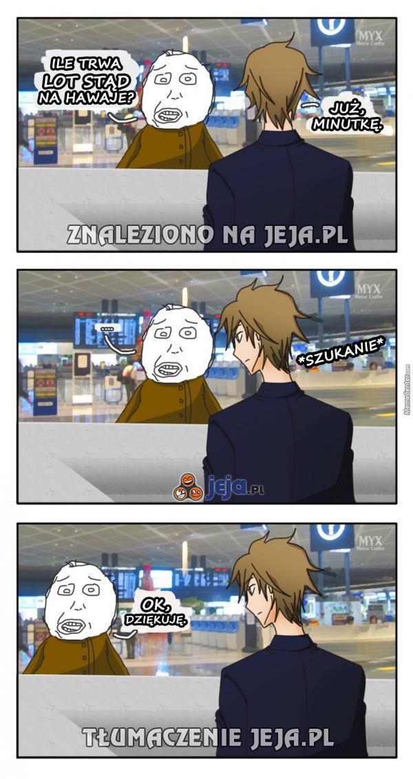 Lotniskowi idioci