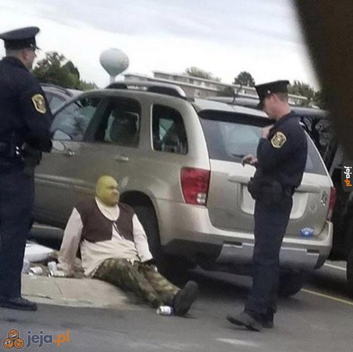 Nowy Shrek świetnie się zapowiada