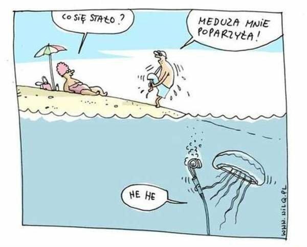 Zła meduza