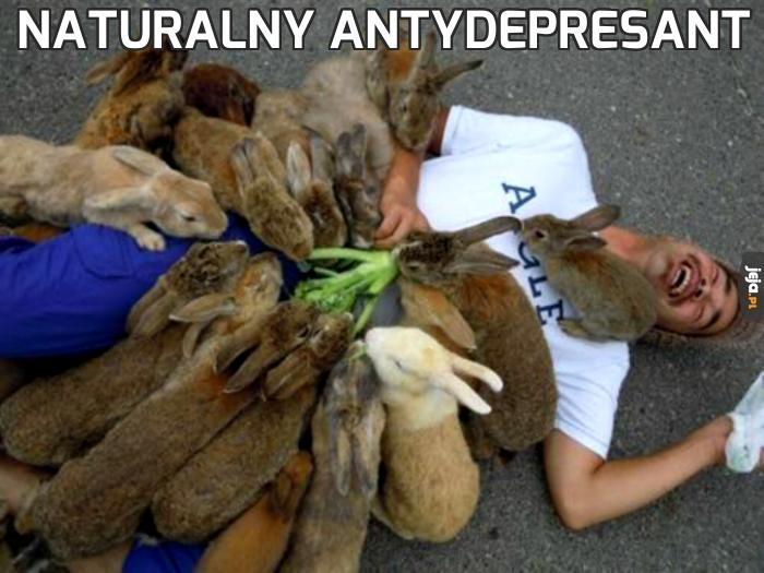 Naturalny antydepresant
