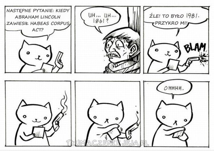 Quiz z kotem