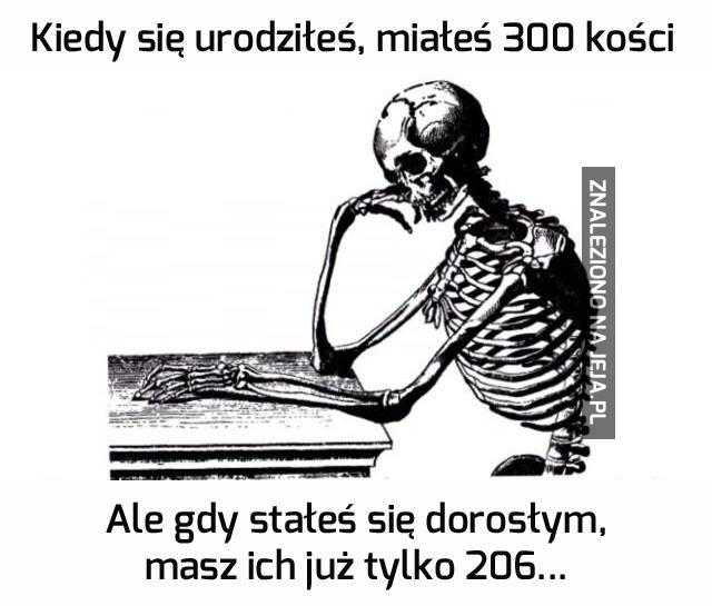Gdzie te 94 kości?