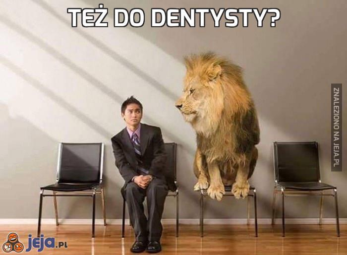 Też do dentysty?