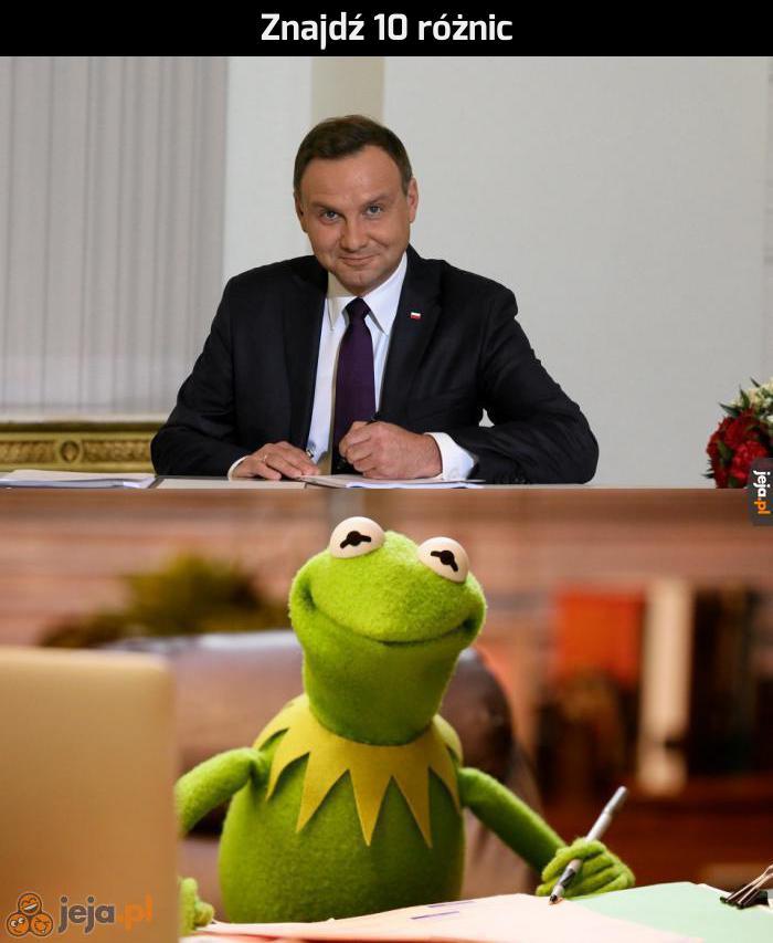 Andrzej i Kermit