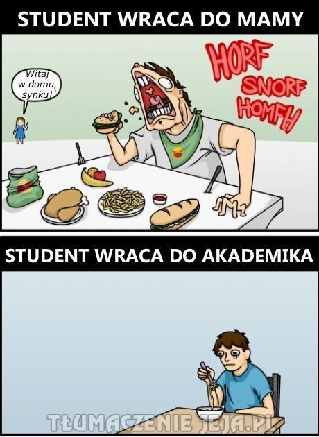 Odżywianie studenta