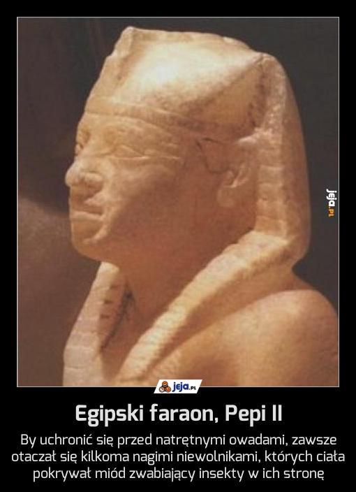 Egipski faraon, Pepi II