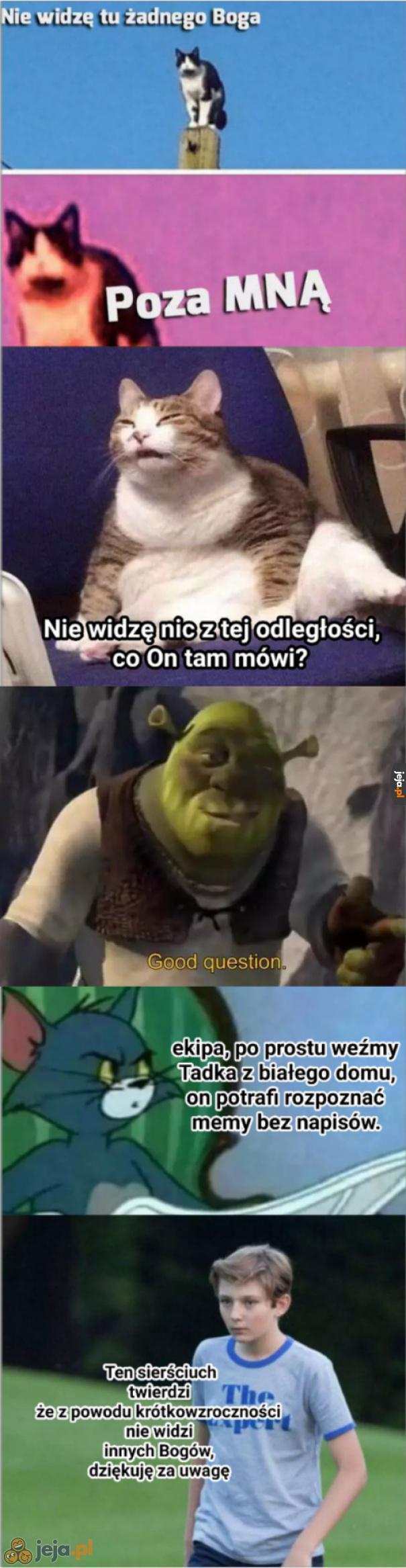 Nowe połączenie memów