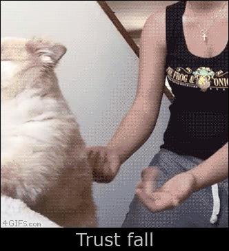 Prawdziwe zaufanie