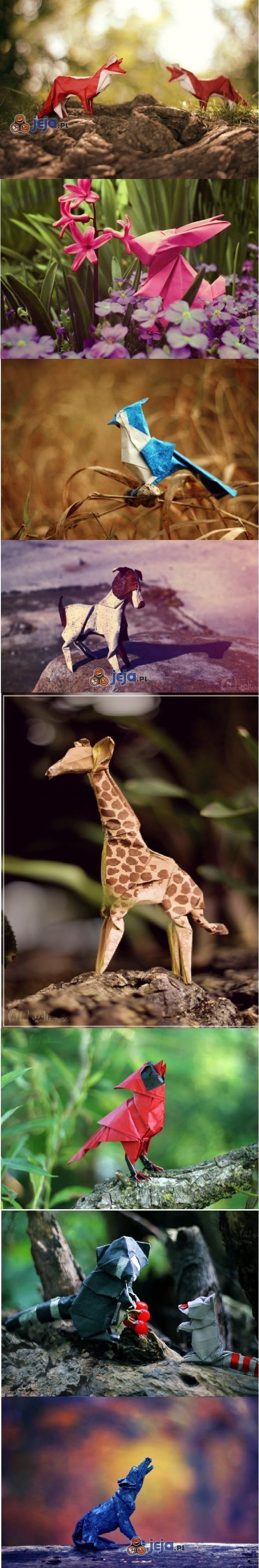 Zwierzęta origami w naturalnym środowisku