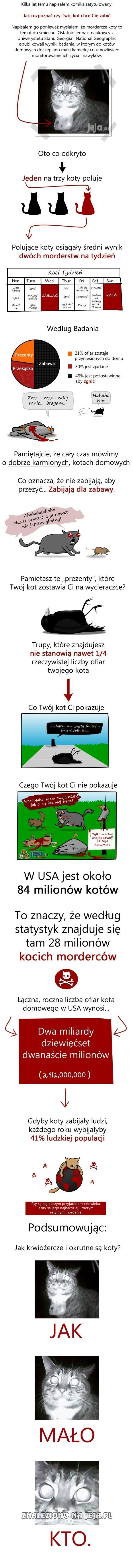 Koci Mordercy