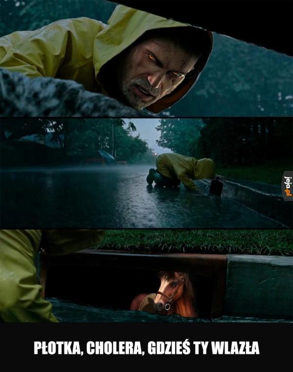 Nie wyrabiam z tym koniem