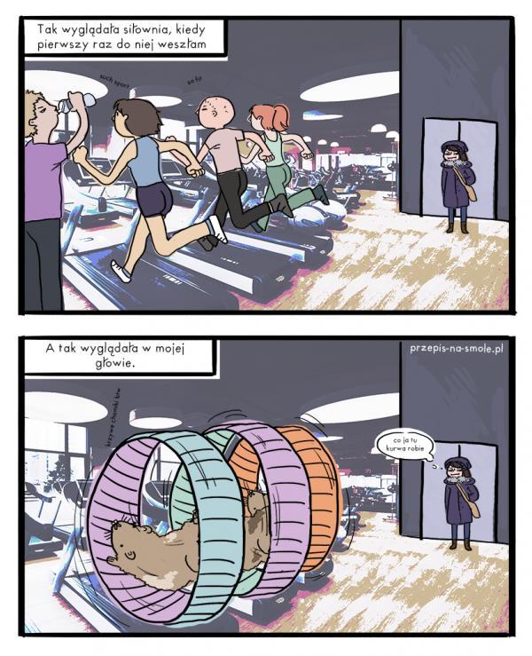 Jak widzę siłownię