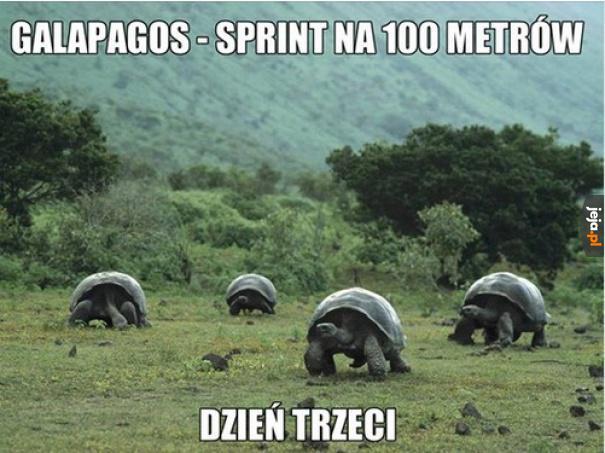 Komentuje Dariusz Szpakowski