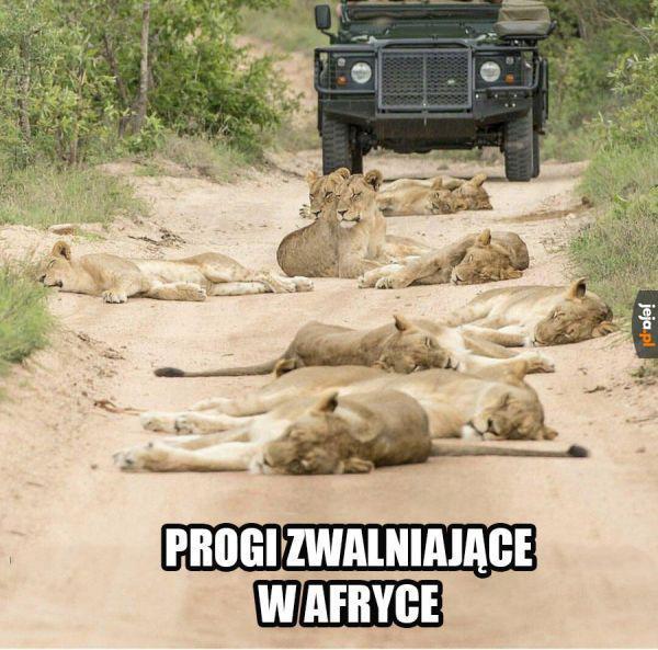 Leżący policjant po afrykańsku
