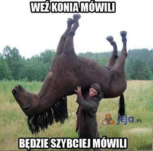 Weź konia, mówili...