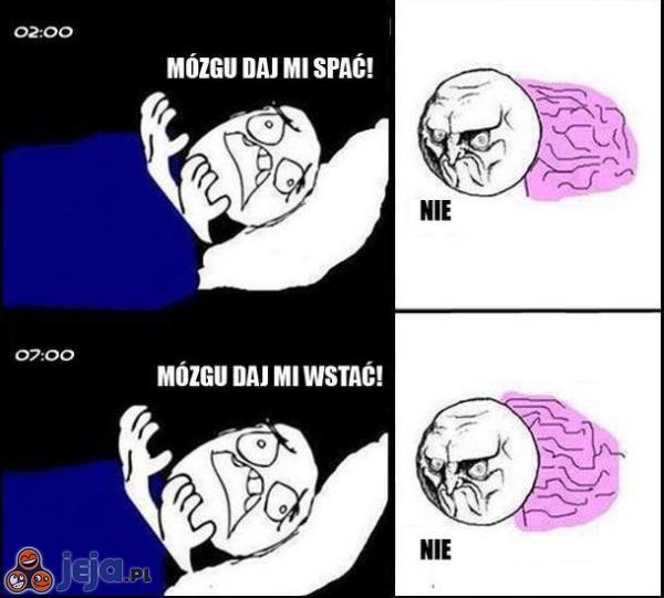 Mózgu!