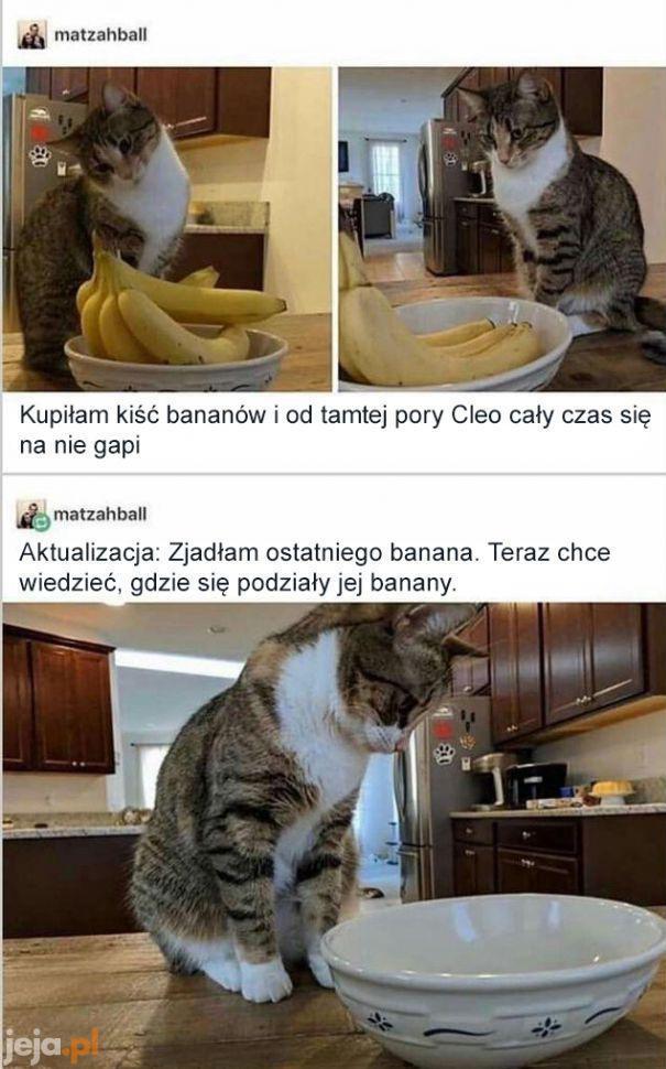 Ach tak, banany są niezwykle interesujące