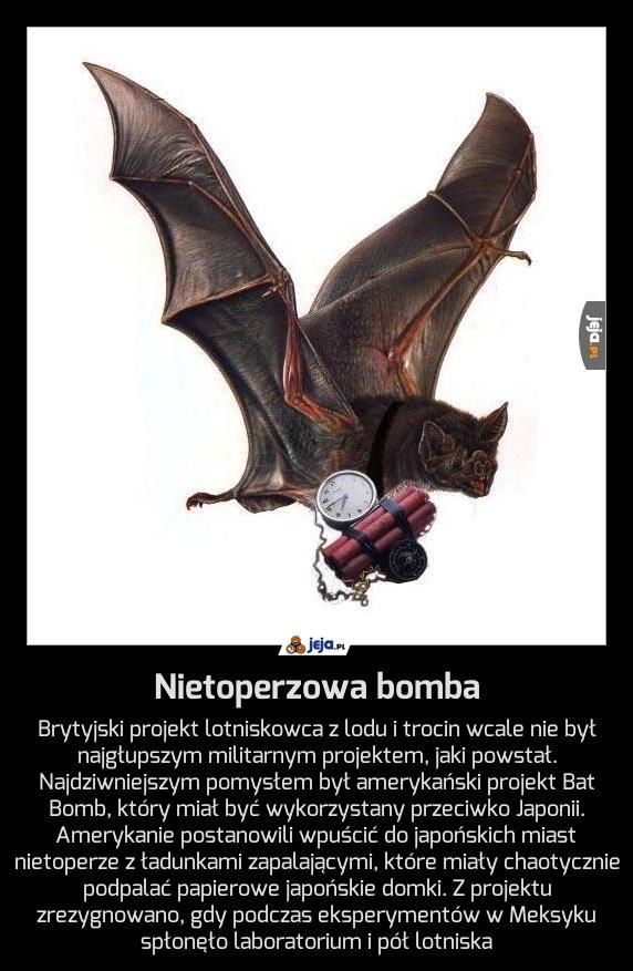 Nietoperzowa bomba