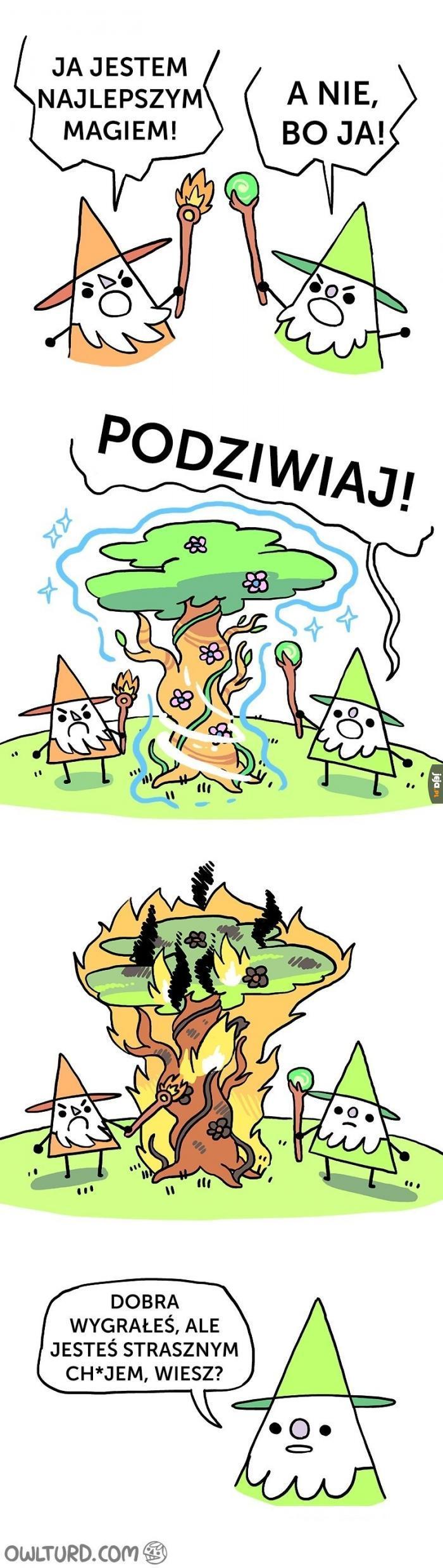 Pojedynek magów