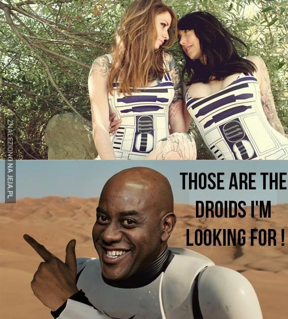 Aresztować te droidy!