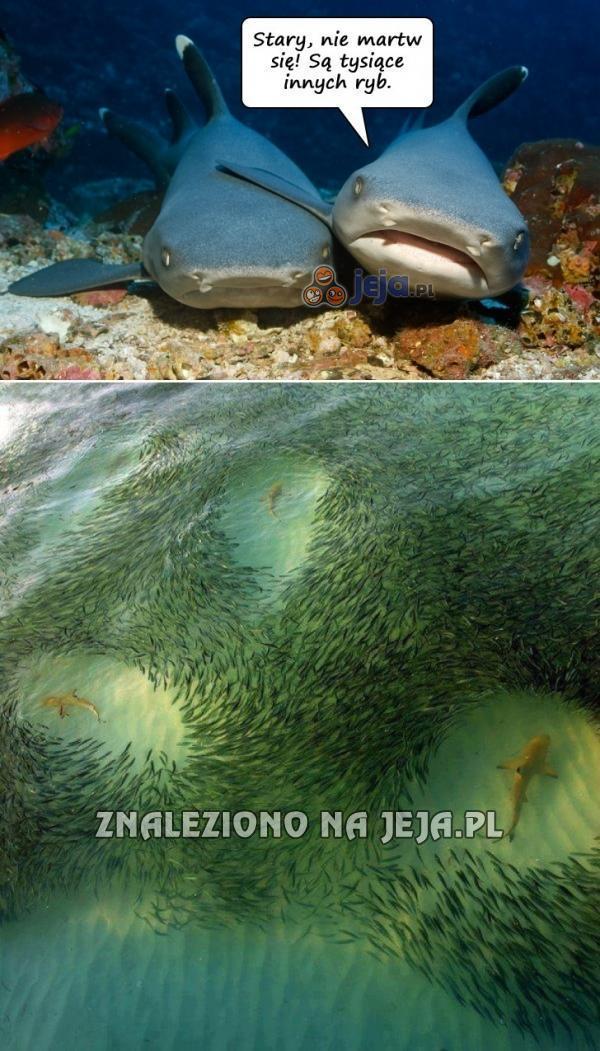 Forever alone - wersja podwodna