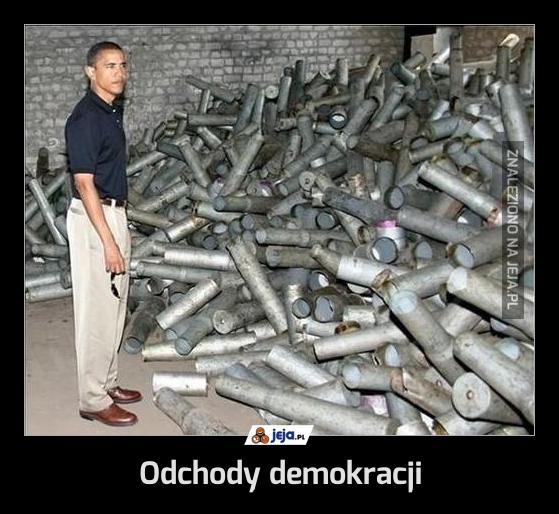 Odchody demokracji