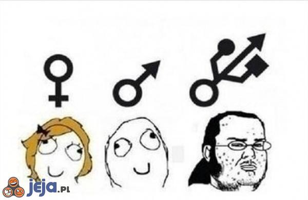 Nowoczesny podział płci