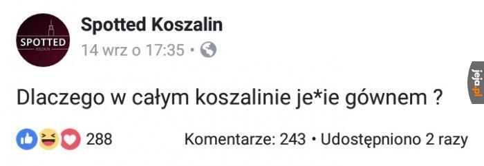 Koszalin - miasto memów i...