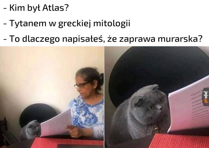 Za dużo memów