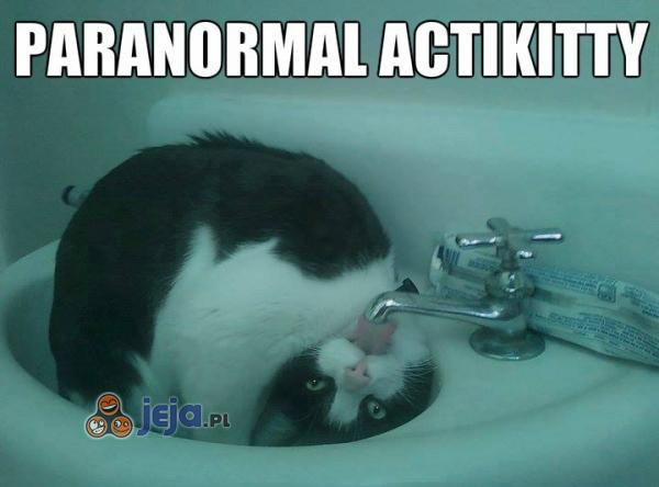 Paranormal Actikitty