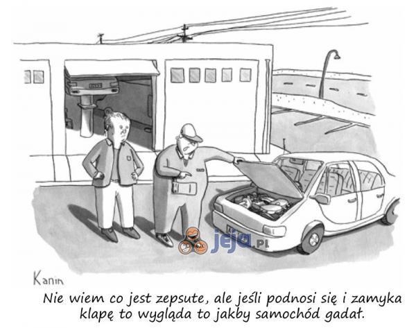 Samochód gada