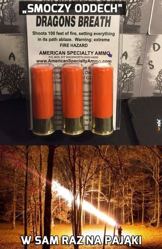 Amunicja anty-pajęcza
