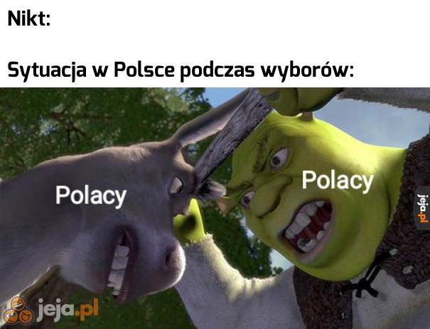 Polak Polakowi wilkiem