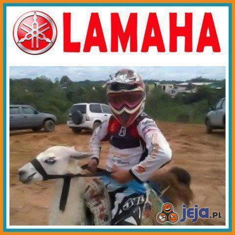 Lamaha