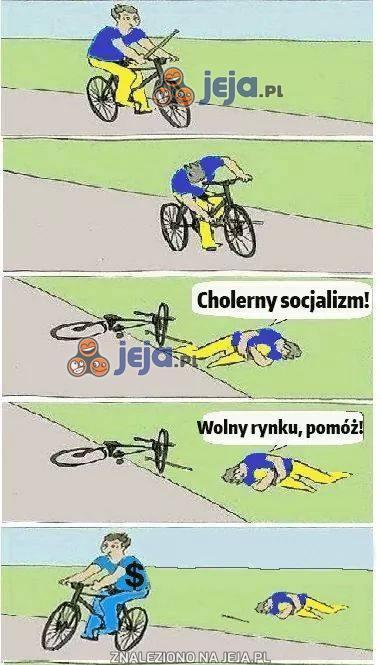 Cholerny socjalizm