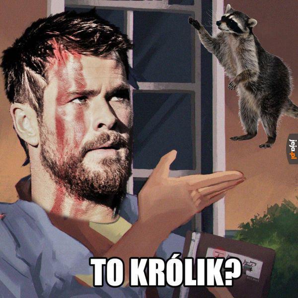 Thor jest słaby z ziemskiej fauny
