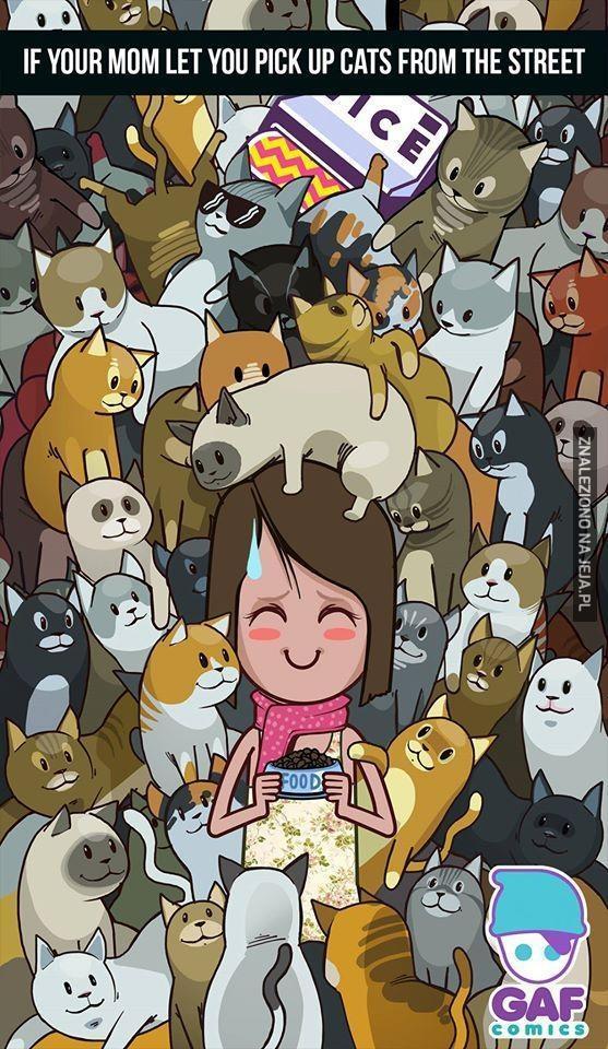 Gdyby mama pozwalała mi zbierać kotki z ulicy