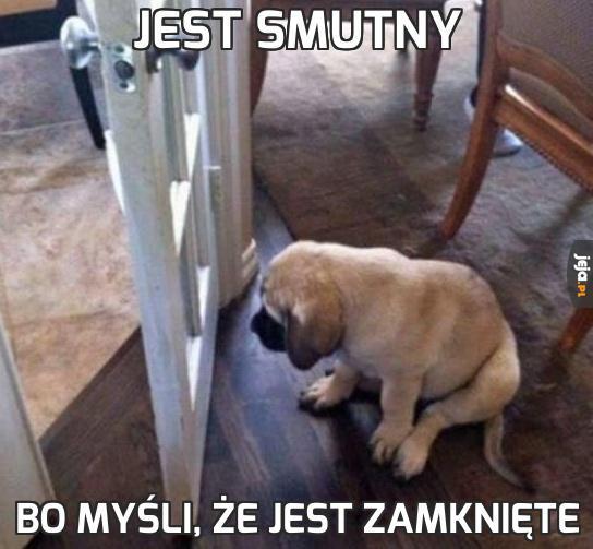 Jest smutny