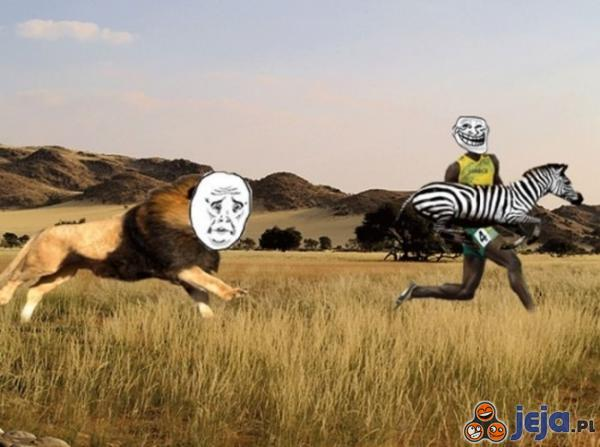 Bolt trolluje lwa