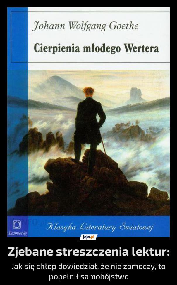 Piękna powieść